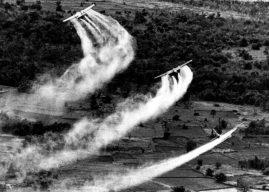 Belajar dari Kasus Vietnam: Kejahatan Korporasi Monsanto di Indonesia Harus Dihentikan