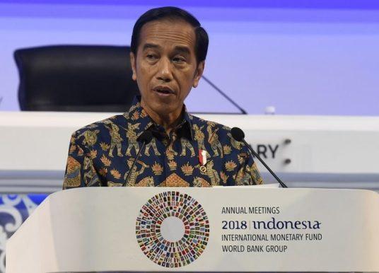 Jokowi Mengikuti Sistem Ekonomi Neolib hingga Lubang Biawak?