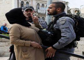 Penulis New York Times Kecam Kekejaman Israel di Palestina